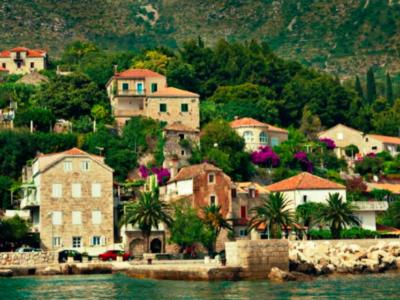 Kroatien har en frodig växtlighet.