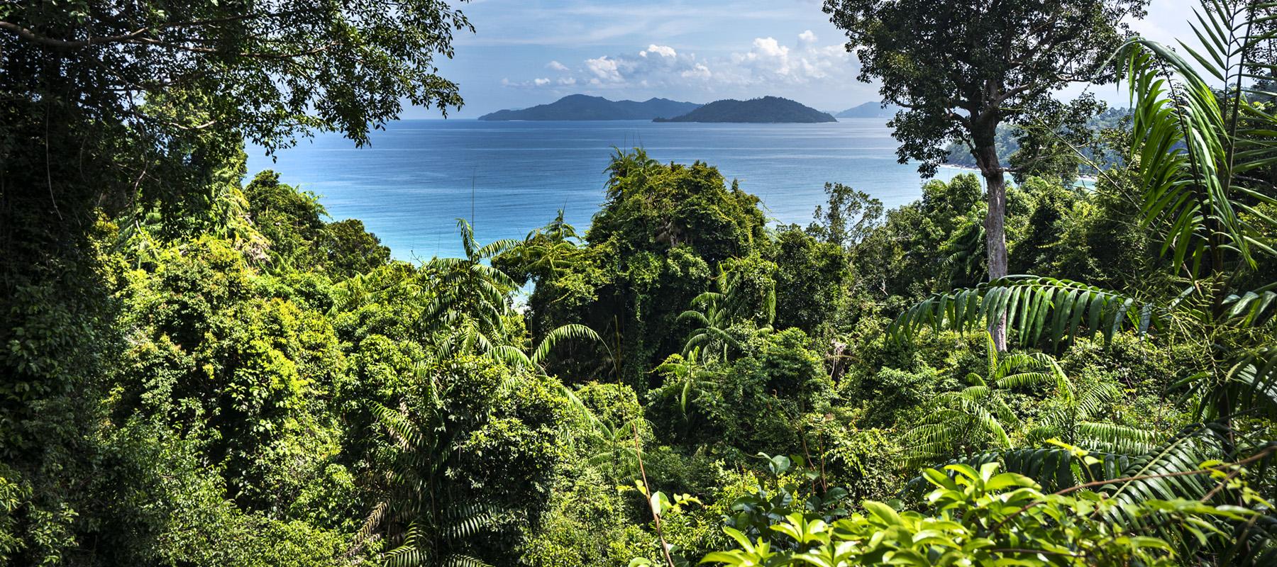 Malaysia_Borneo_Kinabatangan_