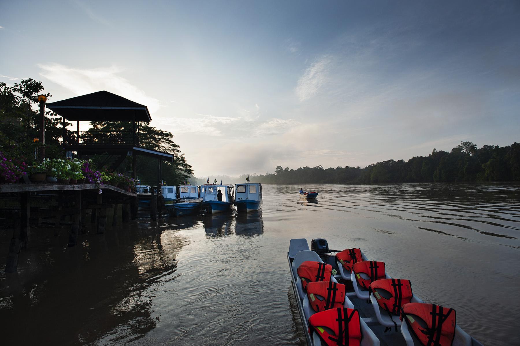 Malaysia_Borneo_Kinabatangan_Morning_